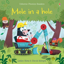 Mole in a Hole by Lesley Sims, 9781409580423