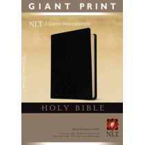 NLT Holy Bible, Giant Print, 9781414314280