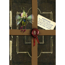 Arthur Spiderwick's Field Guide to the Fantastical World Around You: Movie Tie-in Edition by Tony DiTerlizzi, 9781416960959
