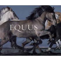 Equus (Mini) by Tim Flach, 9781419716683
