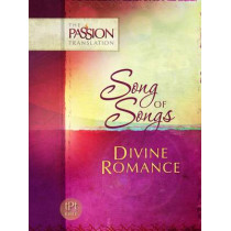 Divine Romance by Brian Simmons, 9781424549573