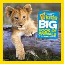 Little Kids First Big Book of Animals (First Big Book) by Catherine D. Hughes, 9781426307041