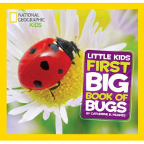 Little Kids First Big Book of Bugs (First Big Book) by Catherine D. Hughes, 9781426317231