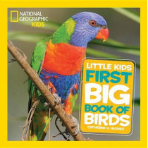 Little Kids First Big Book of Birds (First Big Book) by Catherine D. Hughes, 9781426324321