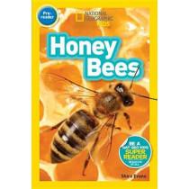 National Geographic Kids Readers: Buzz, Bee! (National Geographic Kids Readers: Level Pre-Reader) by Jennifer Szymanski, 9781426327803