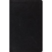 ESV Large Print Thinline Reference Bible, 9781433532795