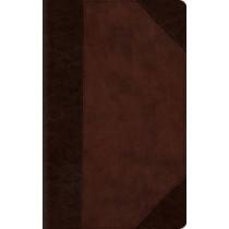 ESV Large Print Compact Bible, 9781433541551