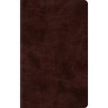 ESV Thinline Bible, 9781433544026