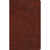ESV Large Print Value Thinline Bible, 9781433550263