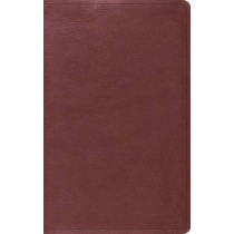 ESV Value Thinline Bible, 9781433550645