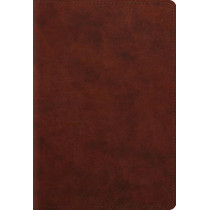 ESV Student Study Bible, 9781433556258