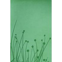RVR 1960 Biblia Tamano Personal, pradera verde simil piel, 9781433602092