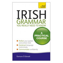 Irish Grammar You Really Need to Know: Teach Yourself by Eamonn O Donaill, 9781444189575