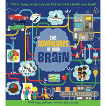 The Adventures of Your Brain by Dan Green, 9781454925125