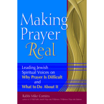 Making Prayer Real: Leading Jewish Spiritual Voices on Why Prayer is Difficult and What to Do About it by Rabbi Mike Comins, 9781580234177