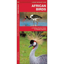 African Birds: A Folding Pocket Guide to Familiar Species by James Kavanagh, 9781583550335
