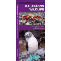 Galapagos Wildlife: A Folding Pocket Guide to Familiar Animals by James Kavanagh, 9781583550816