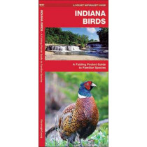 Indiana Birds: A Folding Pocket Guide to Familiar Species by James Kavanagh, 9781583551455