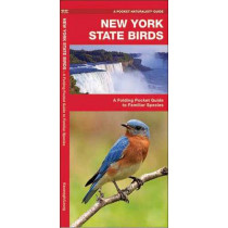 New York State Birds: A Folding Pocket Guide to Familiar Species by James Kavanagh, 9781583551592