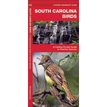 South Carolina Birds: A Folding Pocket Guide to Familiar Species by James Kavanagh, 9781583551677
