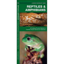 Reptiles & Amphibians: A Folding Pocket Guide to Familiar North American Species by James Kavanagh, 9781583551806
