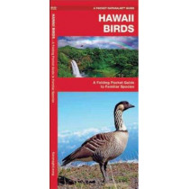 Hawaii Birds: A Folding Pocket Guide to Familiar Species by James Kavanagh, 9781583551974