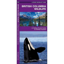 British Columbia Wildlife: A Folding Pocket Guide to Familiar Species by James Kavanagh, 9781583552780