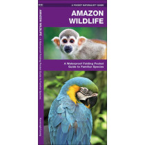 Amazon Wildlife: A Waterproof Pocket Guide to Familiar Species by James Kavanagh, 9781583557174