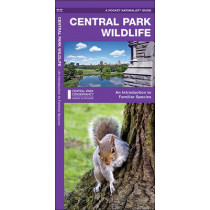 Central Park Wildlife: A Folding Pocket Guide to Familiar Species by James Kavanagh, 9781583557747