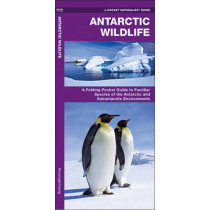 Antarctic Wildlife: A Folding Pocket Guide to Familiar Species of the Antarctic and Subantarctic Environments by James Kavanagh, 9781583557884
