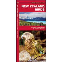 New Zealand Birds: A Folding Pocket Guide to Familiar Species by James Kavanagh, 9781583558898