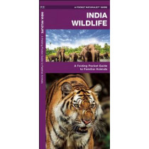 India Wildlife: A Folding Pocket Guide to Familiar Animals by James Kavanagh, 9781583559406
