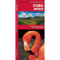 Cuba Birds: A Folding Pocket Guide to Familiar Species by James Kavanagh, 9781583559819