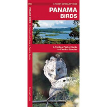 Panama Birds: A Folding Pocket Guide to Familiar Species by James Kavanagh, 9781583559840