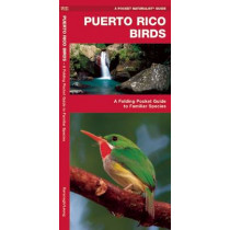 Puerto Rico Birds: A Folding Pocket Guide to Familiar Species by James Kavanagh, 9781583559857