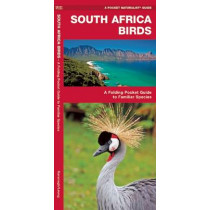 South Africa Birds: A Folding Pocket Guide to Familiar Species by James Kavanagh, 9781583559864