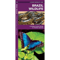 Brazil Wildlife: A Folding Pocket Guide to Familiar Animals by James Kavanagh, 9781583559901