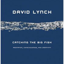 Catching the Big Fish: Meditation, Consciousness and Creativity by David Lynch, 9781585425402