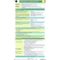 Schizophrenia Pocketcard Set by Bbp, 9781591030829