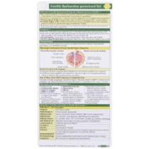 Erectile Dysfunction Pocketcard Set by Joel J Heidelbaugh, 9781591034322