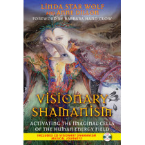 Visionary Shamanism: Activating the Imaginal Cells of the Human Energy Field by Linda Star Wolf, 9781591431312