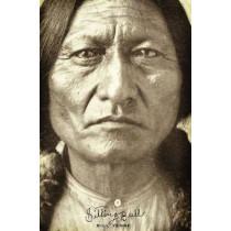 Sitting Bull by Bill Yenne, 9781594160929