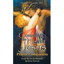 Consoling the Heart of Jesus - Prayer Companion by Fr Michael E Gaitley, 9781596142305