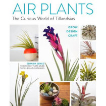 Air Plants: The Curious World of Tillandsias by Zenaida Sengo, 9781604694895