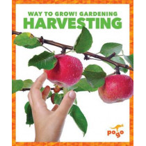 Harvesting by Rebecca Pettiford, 9781620312308