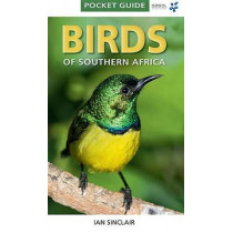 Birds of Southern Africa by Ian Sinclair, 9781770077690