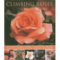 Climbing Roses by Andrew Mikolajski, 9781780192529