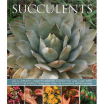 Succulents by Terry Hewitt, 9781780193656