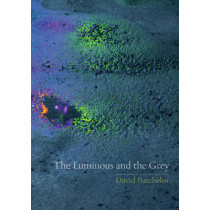 The Luminous and the Grey by David Batchelor, 9781780232805
