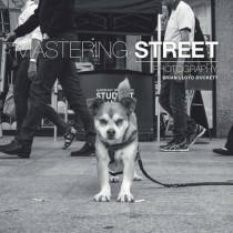 Mastering Street Photography by Brian Lloyd Duckett, 9781781452691